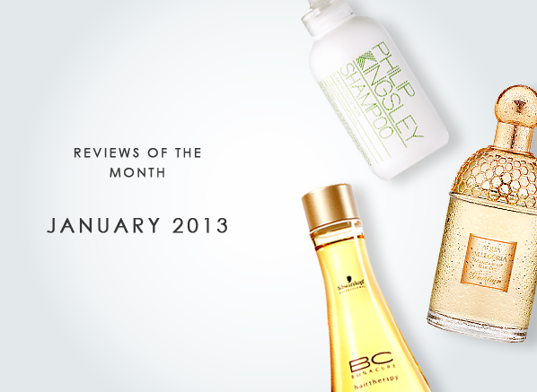 Reviews of the Month January 2013