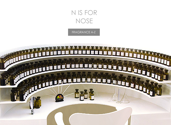 N is for Nose