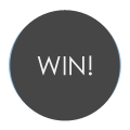 Win Flash Pewter