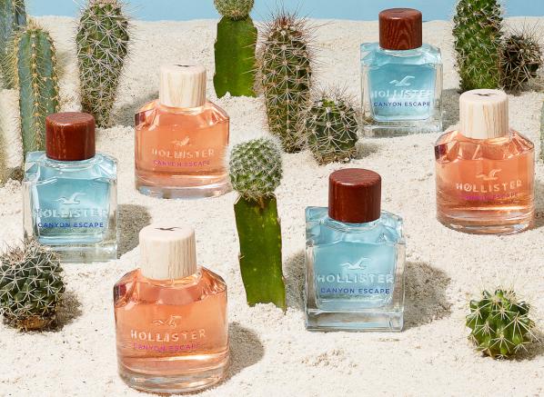 Hollister Canyon Escape For Her Eau de Parfum Review