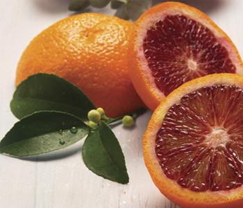 Crabtree & Evelyn Tarocco Orange, Eucalyptus & Sage